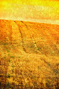 Crackerling landscape